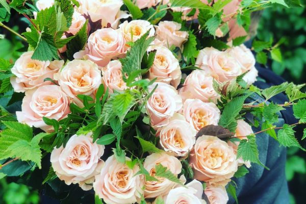 bloemen-18